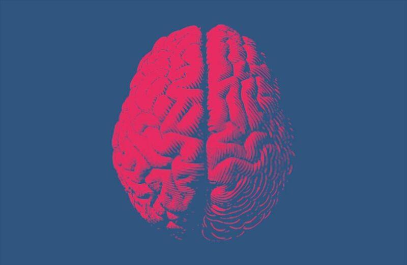 cervello eiaculazione precoce